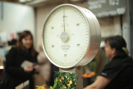 計量・体重計